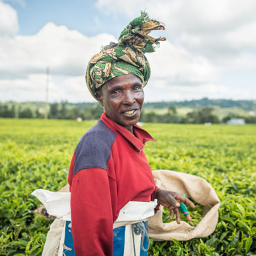 Tea worker Kenya