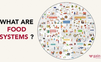 What are food systems pamphlet