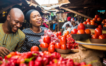 Achieving the SDGs through Food Systems Transformation - On the Road to the Food Systems Summit in 2021