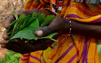 Report urges new partnership to achieve global nutrition goals
