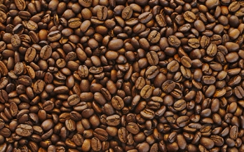Increasing coffee productivity through improved nutrition: a call to action