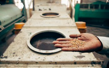 Food fortification: the unfinished agenda