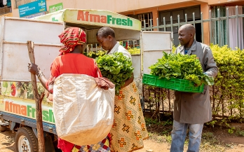 Innovative business models for proximate processing of fresh fruits and vegetables