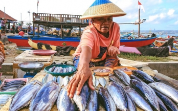 Driving innovation and collective action in Indonesia's fish value chain