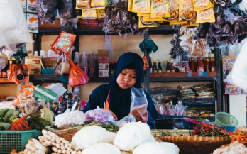 GAIN Discussion Paper Series 1 - Blended finance: A promising approach to unleash private investments in nutritious food value chains in frontier markets