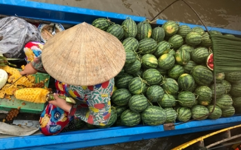 Using formative research to increase purchase intention of fortified foods to prevent micronutrient deficiencies in Vietnam