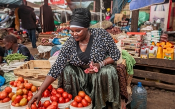 GAIN Working Paper Series 2 - The role of small and medium-sized enterprises in nutritious food supply chains in Africa